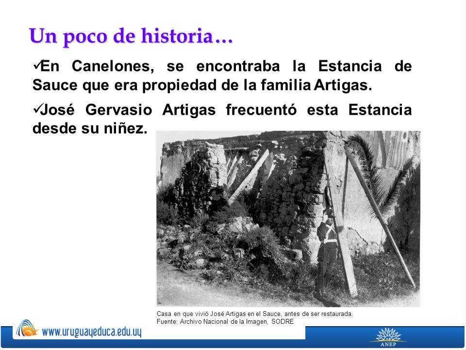 En Canelones, se encontraba la Estancia de Sauce que era propiedad de la familia Artigas. José Gervasio Artigas frecuentó esta Estancia desde su niñez
