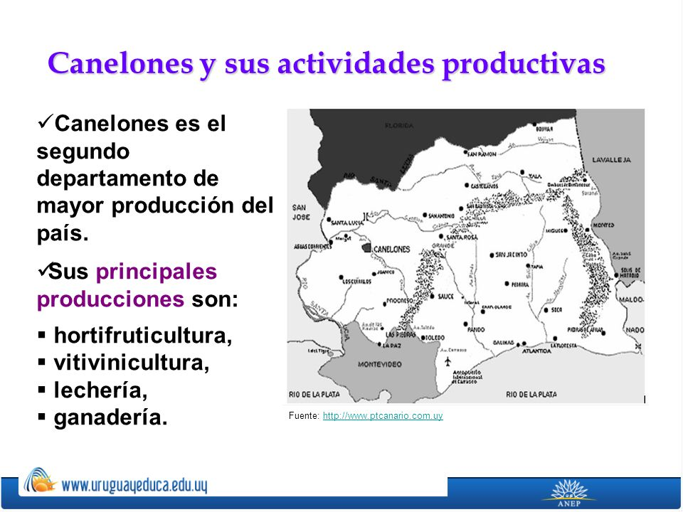 Canelones es el segundo departamento de mayor producción del país. Sus principales producciones son: hortifruticultura, vitivinicultura, lechería, gan