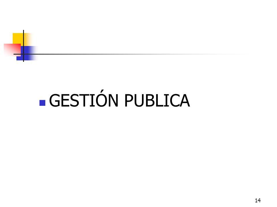GESTIÓN PUBLICA 14