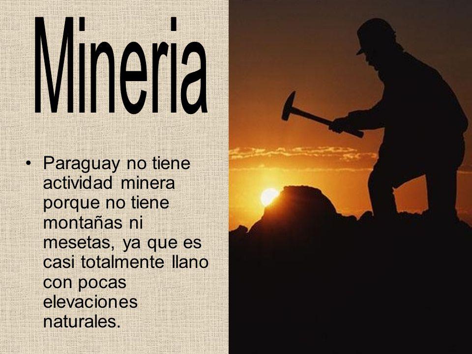 Paraguay no tiene actividad minera porque no tiene montañas ni mesetas, ya que es casi totalmente llano con pocas elevaciones naturales.
