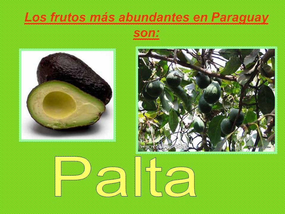 Los frutos más abundantes en Paraguay son: