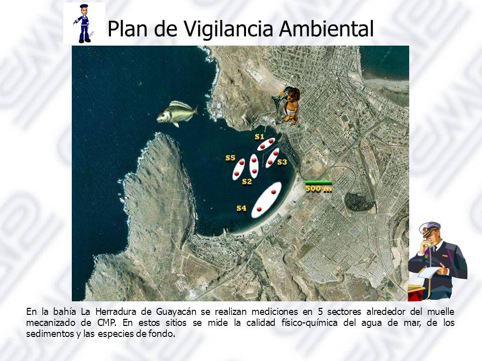 Plan de Vigilancia Ambiental En la bahía La Herradura de Guayacán se realizan mediciones en 5 sectores alrededor del muelle mecanizado de CMP.