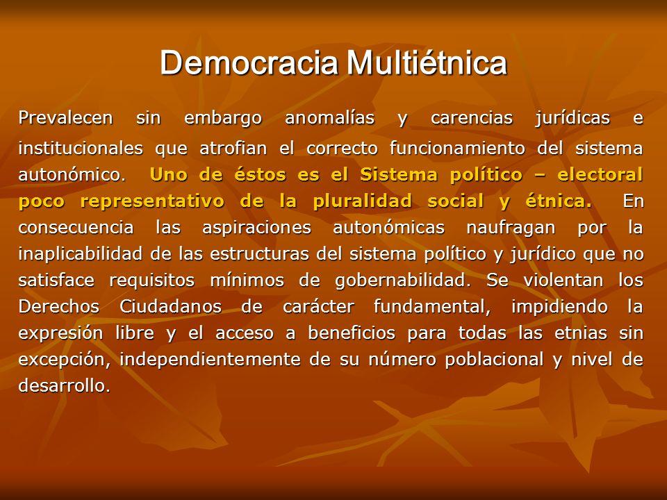 Democracia Multiétnica Prevalecen sin embargo anomalías y carencias jurídicas e institucionales que atrofian el correcto funcionamiento del sistema au
