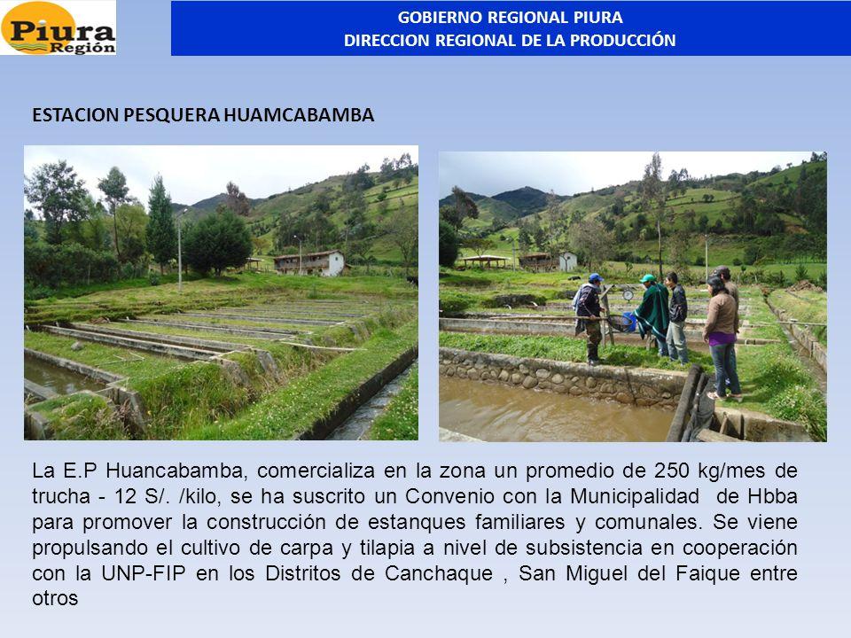 ESTACION PESQUERA HUAMCABAMBA La E.P Huancabamba, comercializa en la zona un promedio de 250 kg/mes de trucha - 12 S/. /kilo, se ha suscrito un Conven