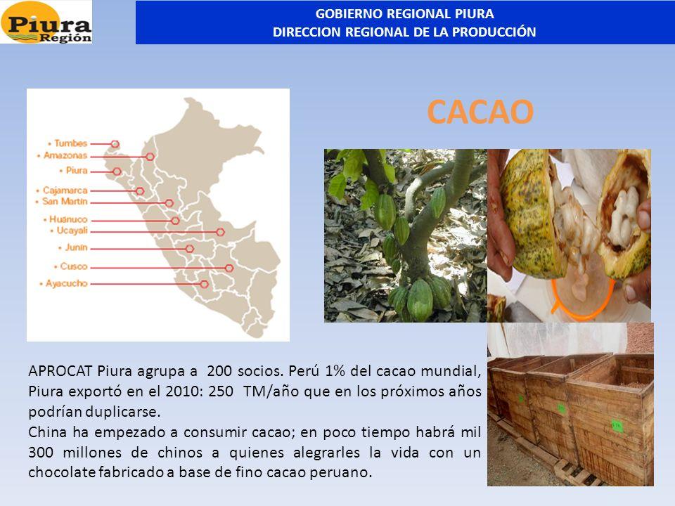 CACAO APROCAT Piura agrupa a 200 socios. Perú 1% del cacao mundial, Piura exportó en el 2010: 250 TM/año que en los próximos años podrían duplicarse.