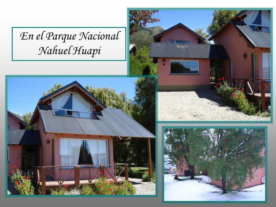 En verano: Sol y el entorno En el Parque Nacional Nahuel Huapi