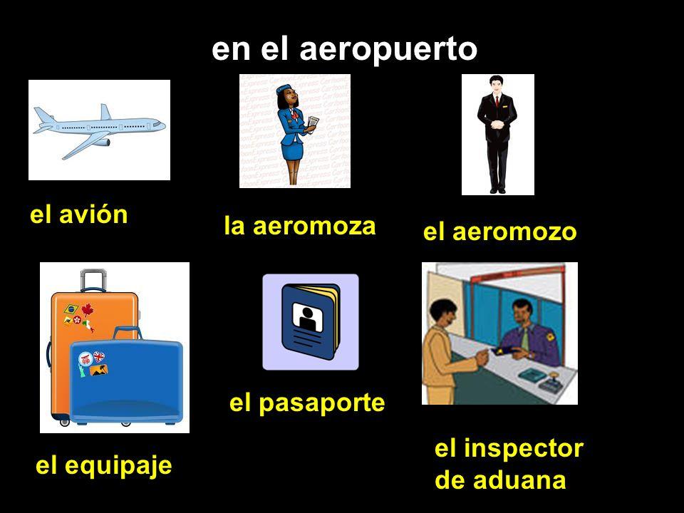 en el aeropuerto el avión la aeromoza el aeromozo el equipaje el pasaporte el inspector de aduana