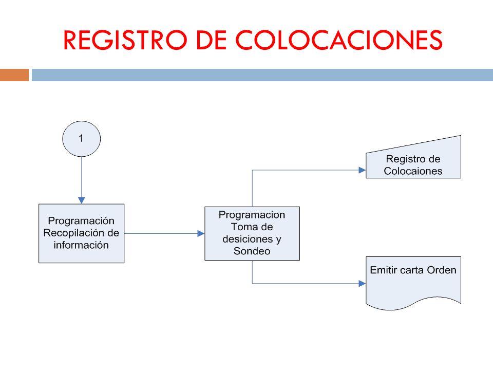 REGISTRO DE COLOCACIONES