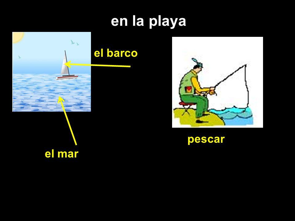 en la playa el mar el barco pescar
