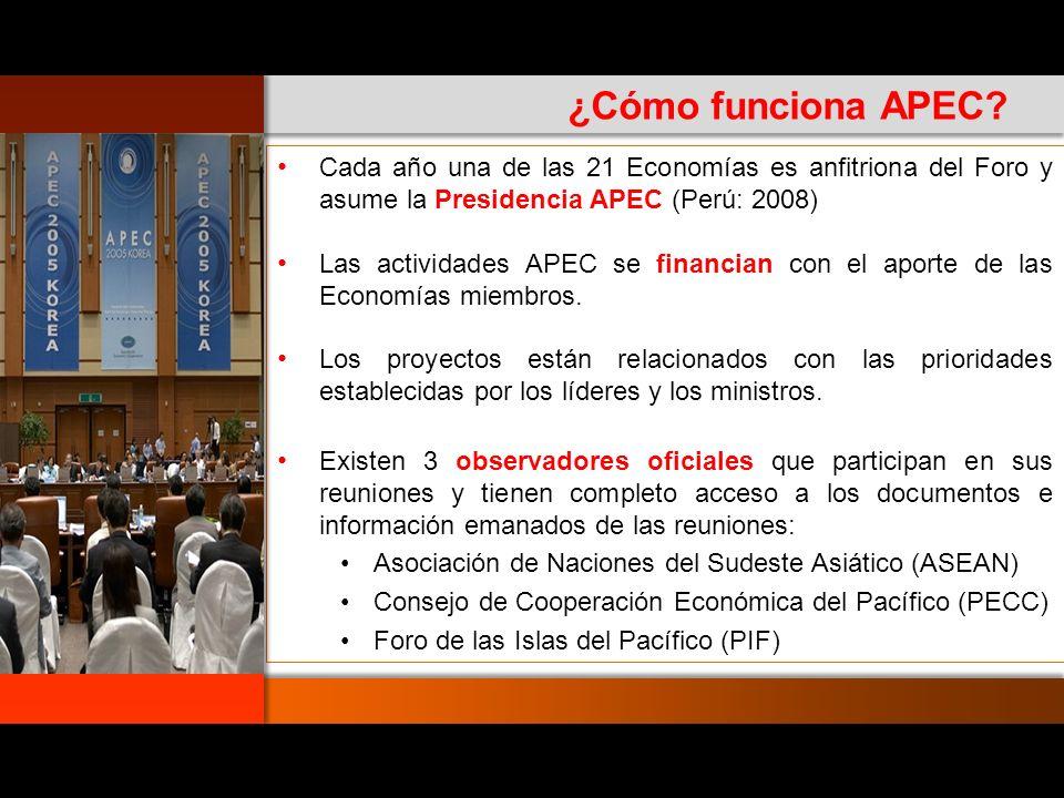 10 Reunión Anual Ministerial (Comercio y RREE) Reuniones Ministeriales Sectoriales Consejo Consultivo Empresarial (ABAC) Reunión de Líderes Reuniones de Altos Funcionarios (SOM) Secretaria APEC Comité de Presupuesto y Administración (BCM) Comité Económico (EC) Comité SOM de Cooperación Económica y Técnica (SCE) Grupos Especiales Grupos de Trabajo Sectoriales (WG) Grupos y Subcomités Diálogos Industriales Comité de Comercio e Inversión (CTI)