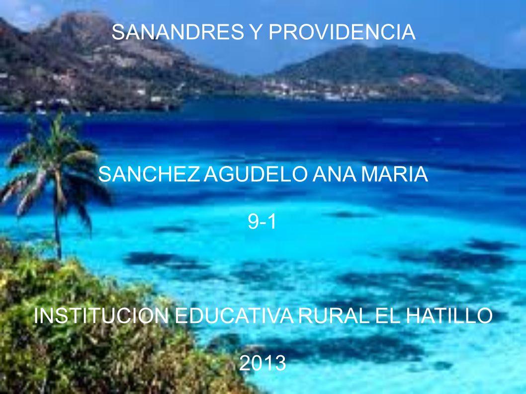 SANCHEZ AGUDELO ANA MARIA 9-1 INSTITUCION EDUCATIVA RURAL EL HATILLO 2013