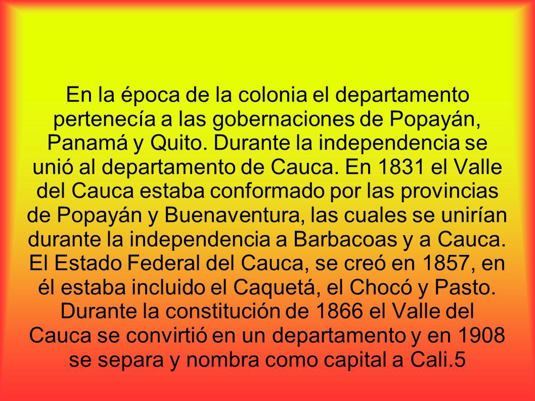 En la época de la colonia el departamento pertenecía a las gobernaciones de Popayán, Panamá y Quito. Durante la independencia se unió al departamento