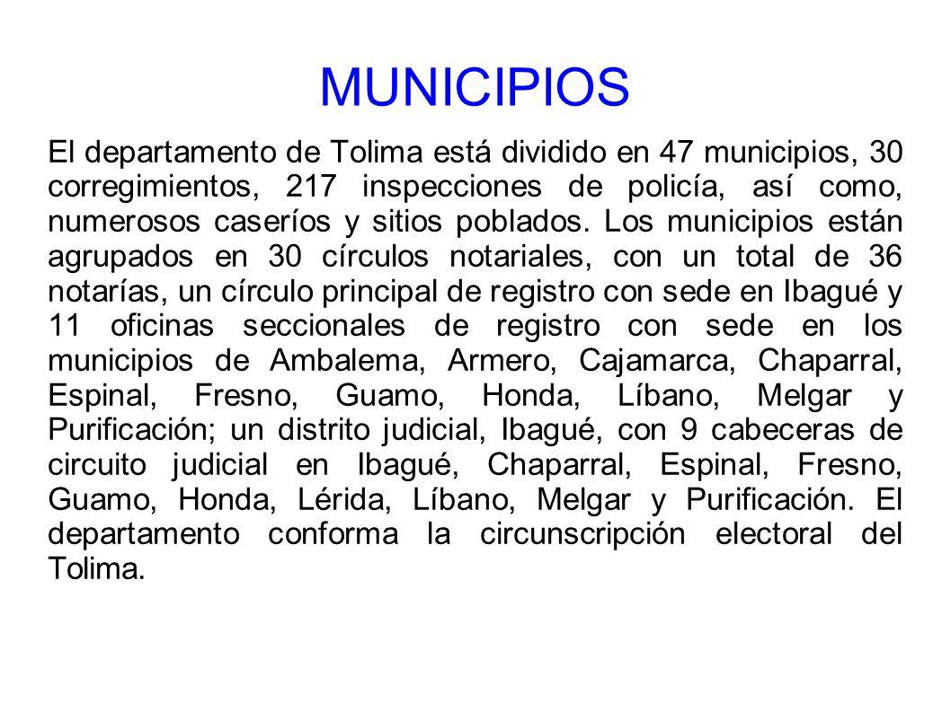 El departamento de Tolima está dividido en 47 municipios, 30 corregimientos, 217 inspecciones de policía, así como, numerosos caseríos y sitios poblad