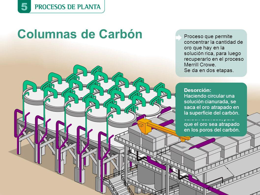 Columnas de Carbón Adsorción: Se pasa la solución rica (con el oro en estado líquido) a través de columnas cargadas con carbón activado, para que el o