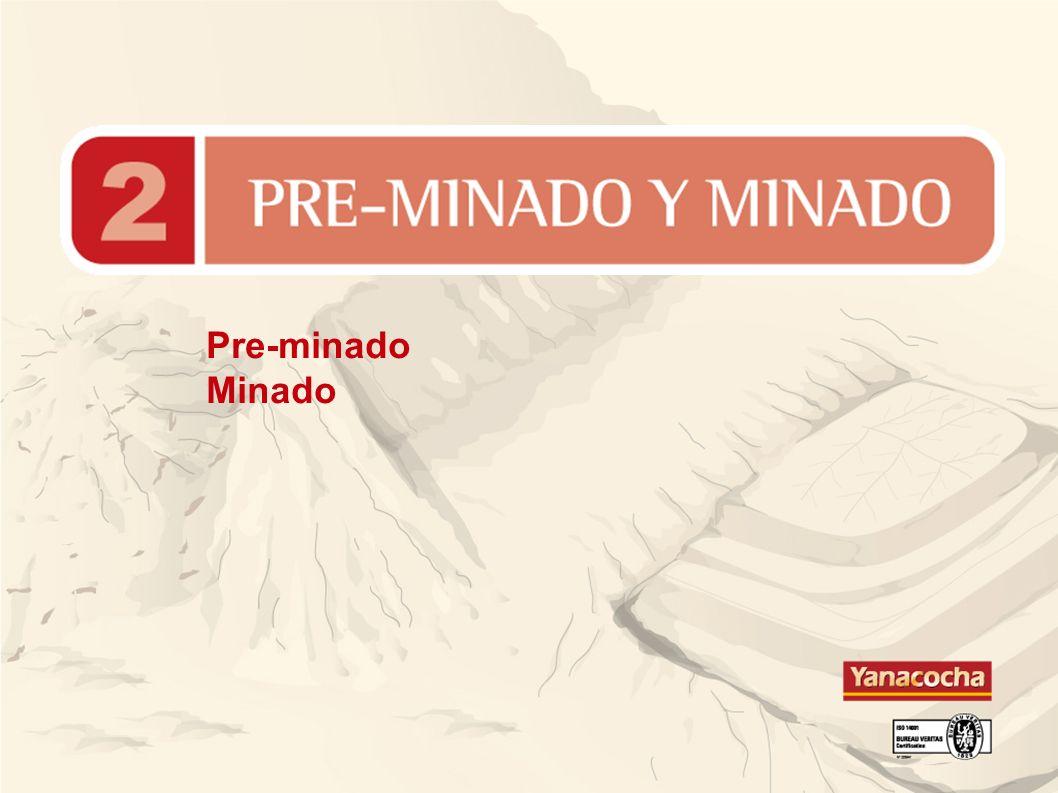 Pre-minado Minado