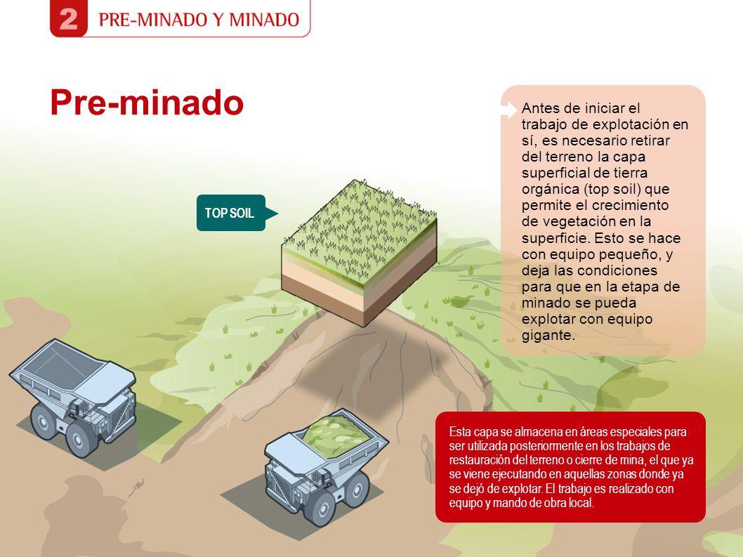 Pre-minado Esta capa se almacena en áreas especiales para ser utilizada posteriormente en los trabajos de restauración del terreno o cierre de mina, e