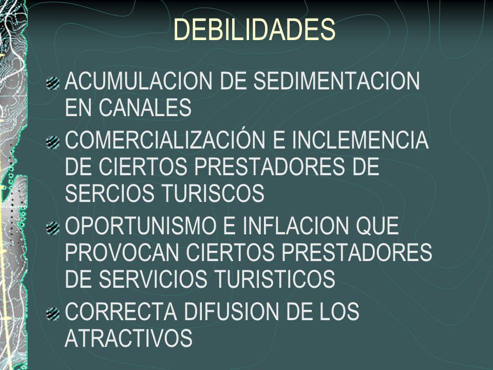 DEBILIDADES INSUFICIENCIA DE SERVICIOS Y FALTA DE INFRAESTRUCTURA CALIDAD DE SERVICIOS CALIDAD DE LA PLANTA TURISTICA ORGANIZACIÓN Y APOYO DE ENTIDADE