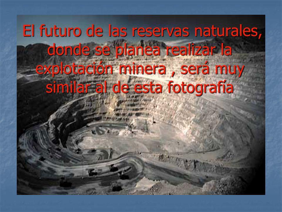 El futuro de las reservas naturales, donde se planea realizar la explotación minera, será muy similar al de esta fotografía El futuro de las reservas