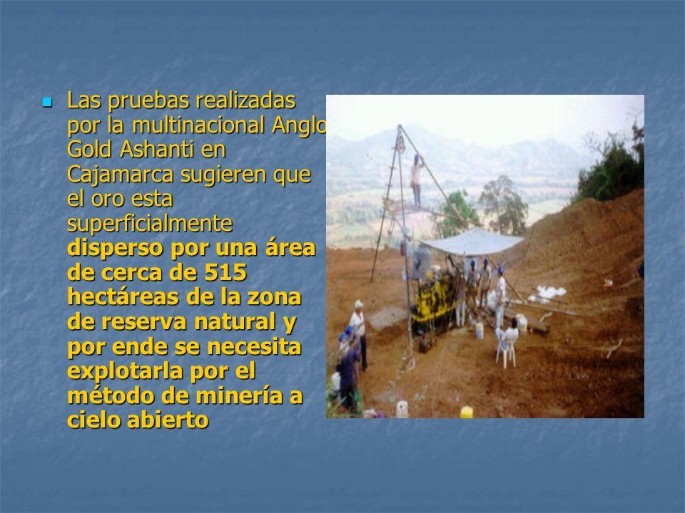 Las pruebas realizadas por la multinacional Anglo Gold Ashanti en Cajamarca sugieren que el oro esta superficialmente disperso por una área de cerca de 515 hectáreas de la zona de reserva natural y por ende se necesita explotarla por el método de minería a cielo abierto Las pruebas realizadas por la multinacional Anglo Gold Ashanti en Cajamarca sugieren que el oro esta superficialmente disperso por una área de cerca de 515 hectáreas de la zona de reserva natural y por ende se necesita explotarla por el método de minería a cielo abierto