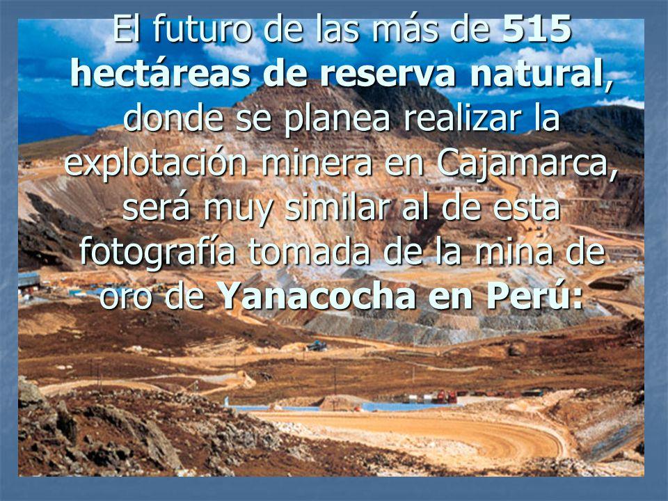 El futuro de las más de 515 hectáreas de reserva natural, donde se planea realizar la explotación minera en Cajamarca, será muy similar al de esta fotografía tomada de la mina de oro de Yanacocha en Perú: