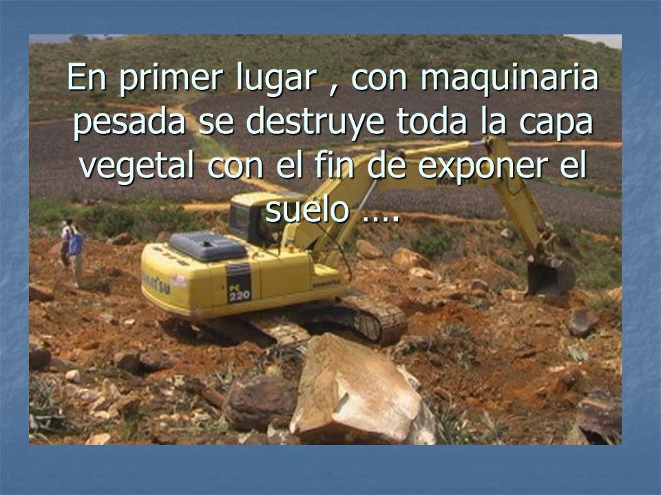 En primer lugar, con maquinaria pesada se destruye toda la capa vegetal con el fin de exponer el suelo ….