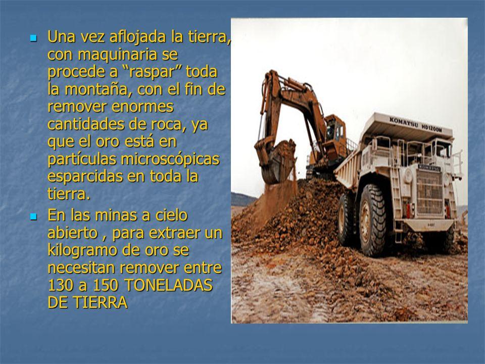 Una vez aflojada la tierra, con maquinaria se procede a raspar toda la montaña, con el fin de remover enormes cantidades de roca, ya que el oro está e