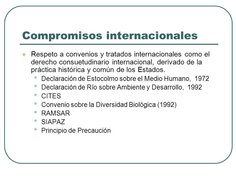 Compromisos internacionales Respeto a convenios y tratados internacionales como el derecho consuetudinario internacional, derivado de la práctica hist