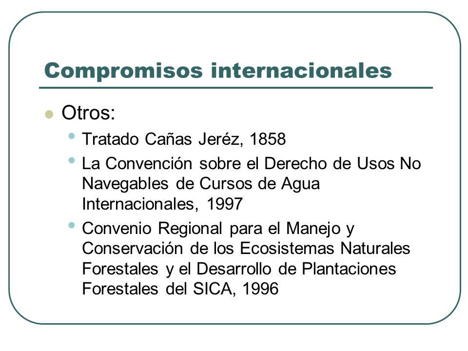 Compromisos internacionales Otros: Tratado Cañas Jeréz, 1858 La Convención sobre el Derecho de Usos No Navegables de Cursos de Agua Internacionales, 1
