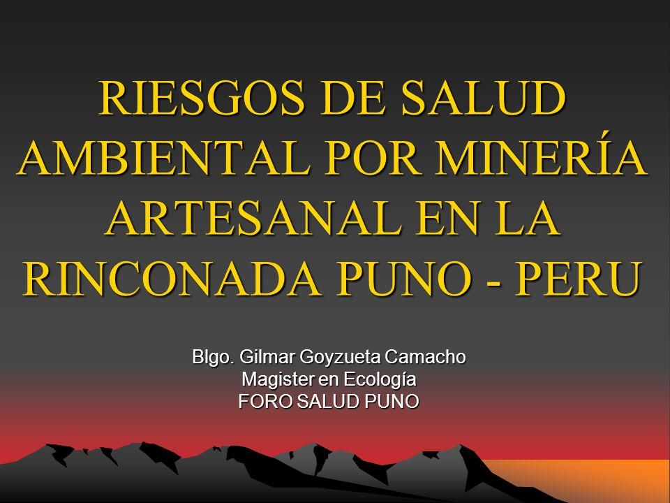 RIESGOS DE SALUD AMBIENTAL POR MINERÍA ARTESANAL EN LA RINCONADA PUNO - PERU Blgo.