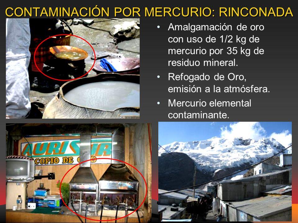 CONTAMINACIÓN POR MERCURIO: RINCONADA Amalgamación de oro con uso de 1/2 kg de mercurio por 35 kg de residuo mineral.