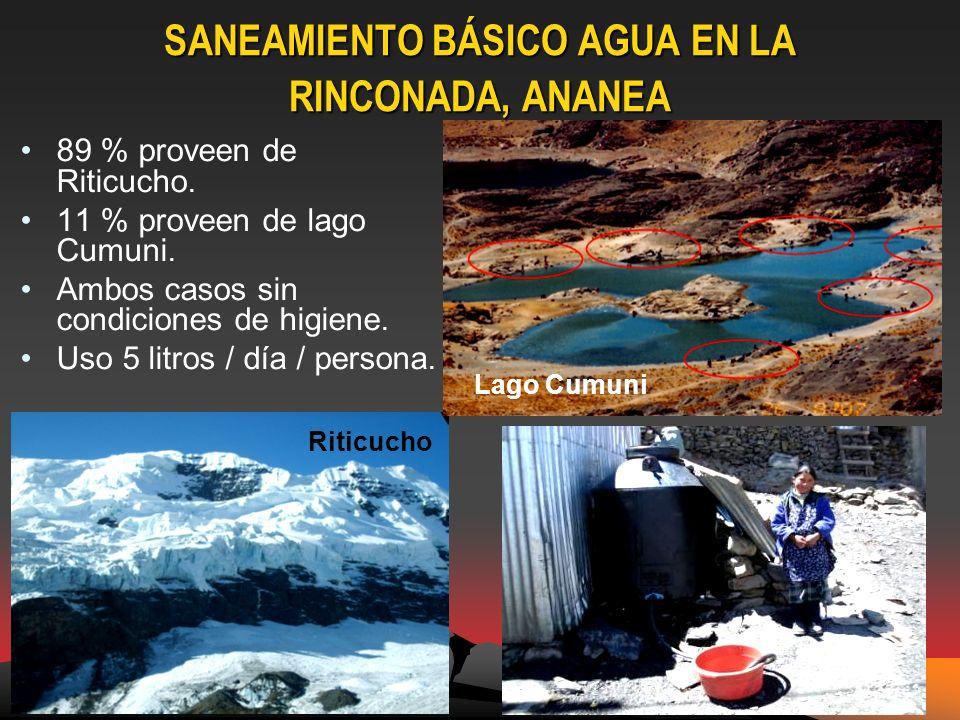 SANEAMIENTO BÁSICO AGUA EN LA RINCONADA, ANANEA 89 % proveen de Riticucho.