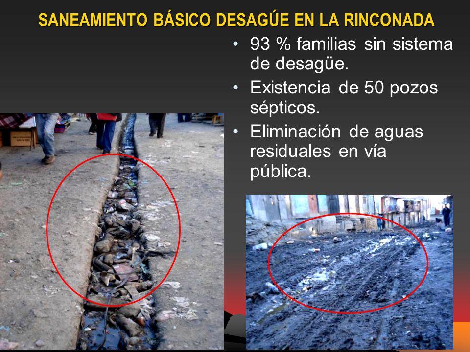 SANEAMIENTO BÁSICO DESAGÚE EN LA RINCONADA 93 % familias sin sistema de desagüe.