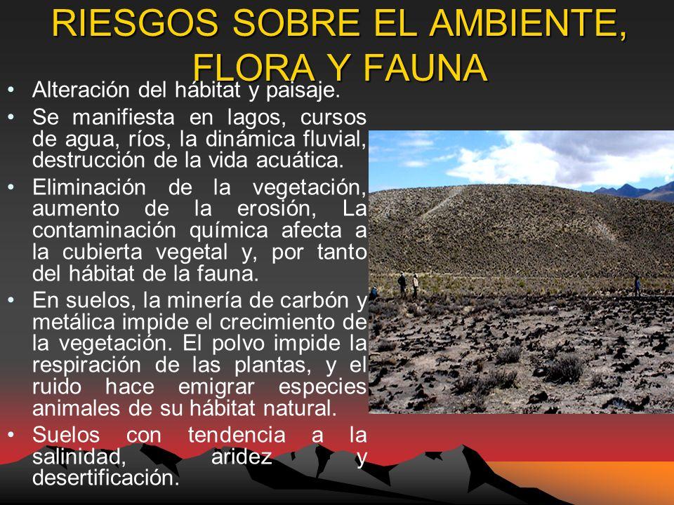 RIESGOS SOBRE EL AMBIENTE, FLORA Y FAUNA Alteración del hábitat y paisaje.