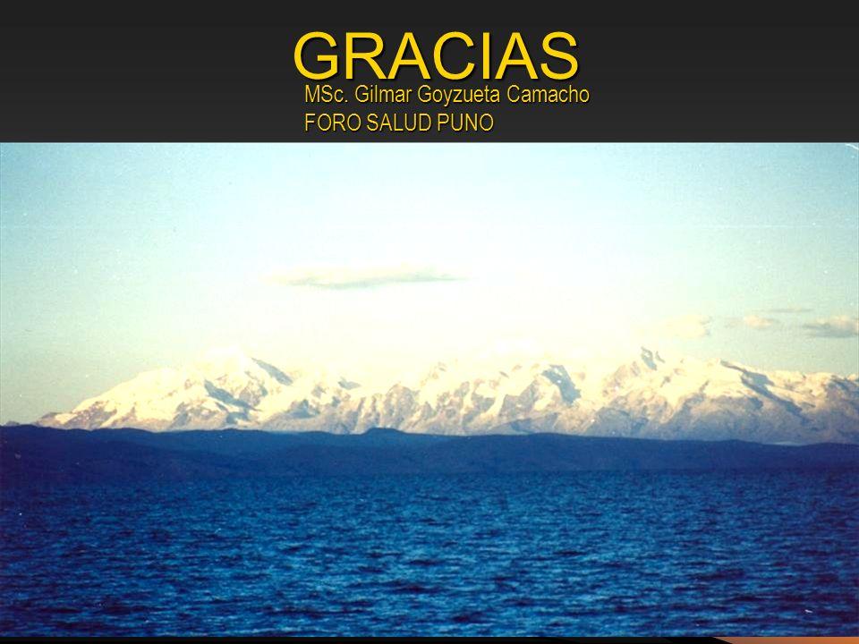 GRACIAS MSc. Gilmar Goyzueta Camacho FORO SALUD PUNO