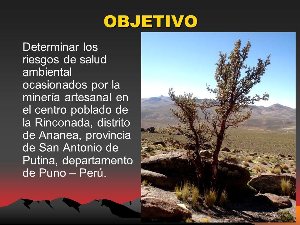 OBJETIVO Determinar los riesgos de salud ambiental ocasionados por la minería artesanal en el centro poblado de la Rinconada, distrito de Ananea, provincia de San Antonio de Putina, departamento de Puno – Perú.