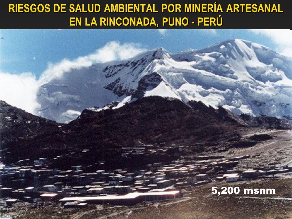 RIESGOS DE SALUD AMBIENTAL POR MINERÍA ARTESANAL EN LA RINCONADA, PUNO - PERÚ 5,200 msnm