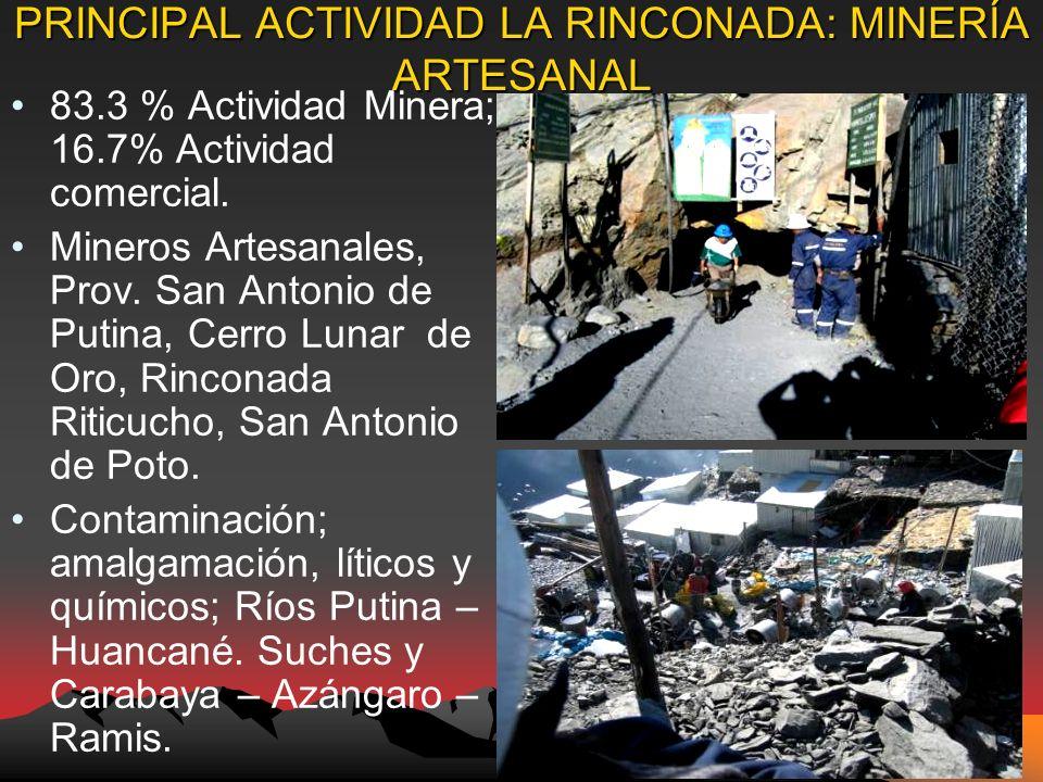 PRINCIPAL ACTIVIDAD LA RINCONADA: MINERÍA ARTESANAL 83.3 % Actividad Minera; 16.7% Actividad comercial.