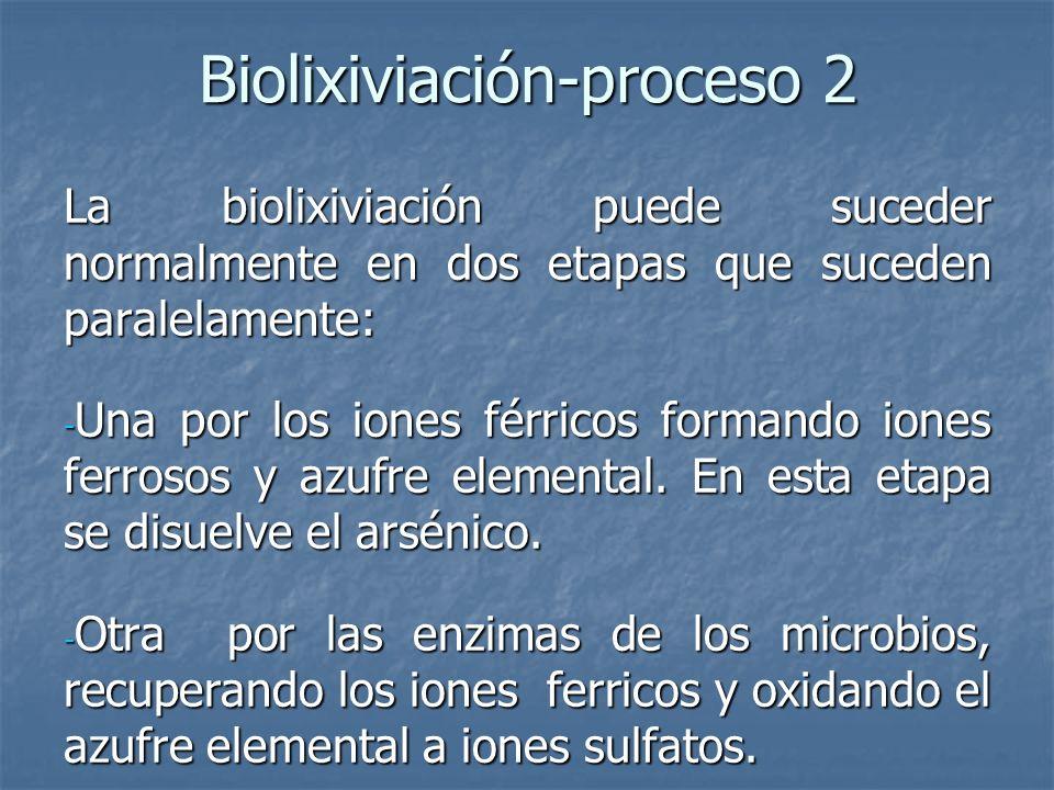 Biolixiviación-proceso 2 La biolixiviación puede suceder normalmente en dos etapas que suceden paralelamente: - Una por los iones férricos formando iones ferrosos y azufre elemental.