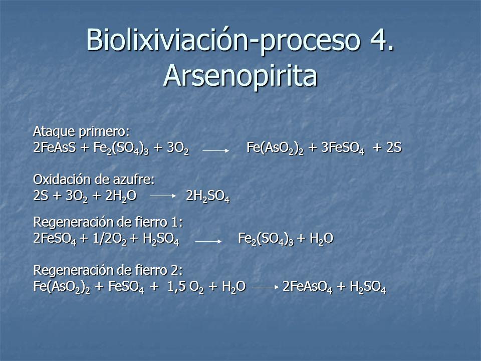 Ataque primero: 2FeAsS + Fe 2 (SO 4 ) 3 + 3O 2 Fe(AsO 2 ) 2 + 3FeSO 4 + 2S Oxidación de azufre: 2S + 3O 2 + 2H 2 O 2H 2 SO 4 Regeneración de fierro 1: 2FeSO 4 + 1/2O 2 + H 2 SO 4 Fe 2 (SO 4 ) 3 + H 2 O Regeneración de fierro 2: Fe(AsO 2 ) 2 + FeSO 4 + 1,5 O 2 + H 2 O 2FeAsO 4 + H 2 SO 4 Biolixiviación-proceso 4.
