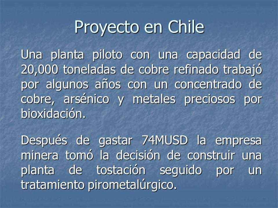 Proyecto en Chile Una planta piloto con una capacidad de 20,000 toneladas de cobre refinado trabajó por algunos años con un concentrado de cobre, arsénico y metales preciosos por bioxidación.