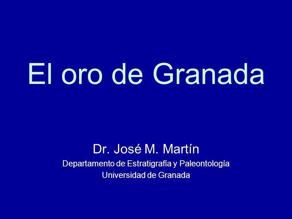 El oro de Granada Dr. José M. Martín Departamento de Estratigrafía y Paleontología Universidad de Granada