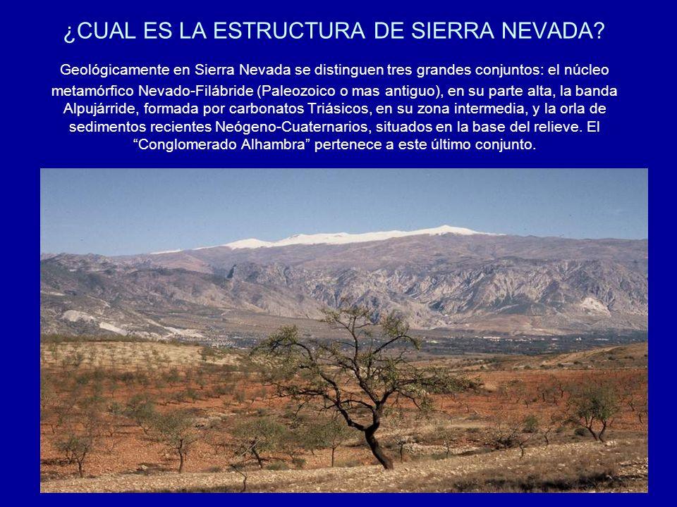 ¿CUAL ES LA ESTRUCTURA DE SIERRA NEVADA? Geológicamente en Sierra Nevada se distinguen tres grandes conjuntos: el núcleo metamórfico Nevado-Filábride