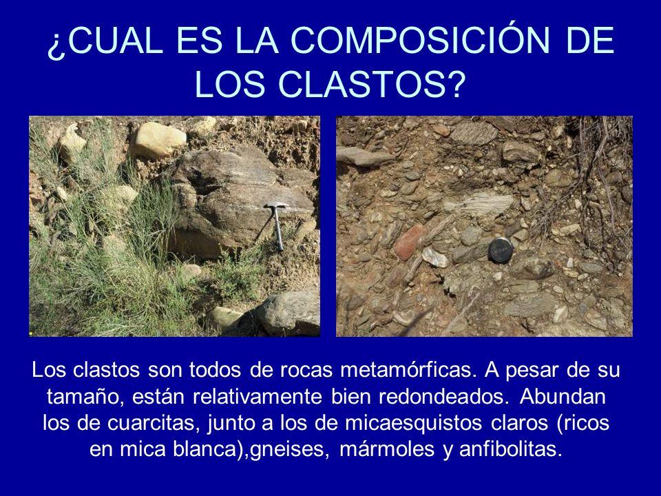 ¿CUAL ES LA COMPOSICIÓN DE LOS CLASTOS? Los clastos son todos de rocas metamórficas. A pesar de su tamaño, están relativamente bien redondeados. Abund