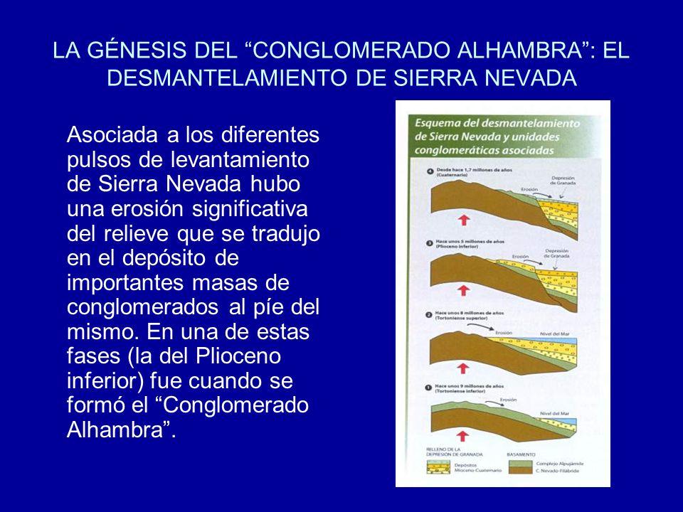 LA GÉNESIS DEL CONGLOMERADO ALHAMBRA: EL DESMANTELAMIENTO DE SIERRA NEVADA Asociada a los diferentes pulsos de levantamiento de Sierra Nevada hubo una