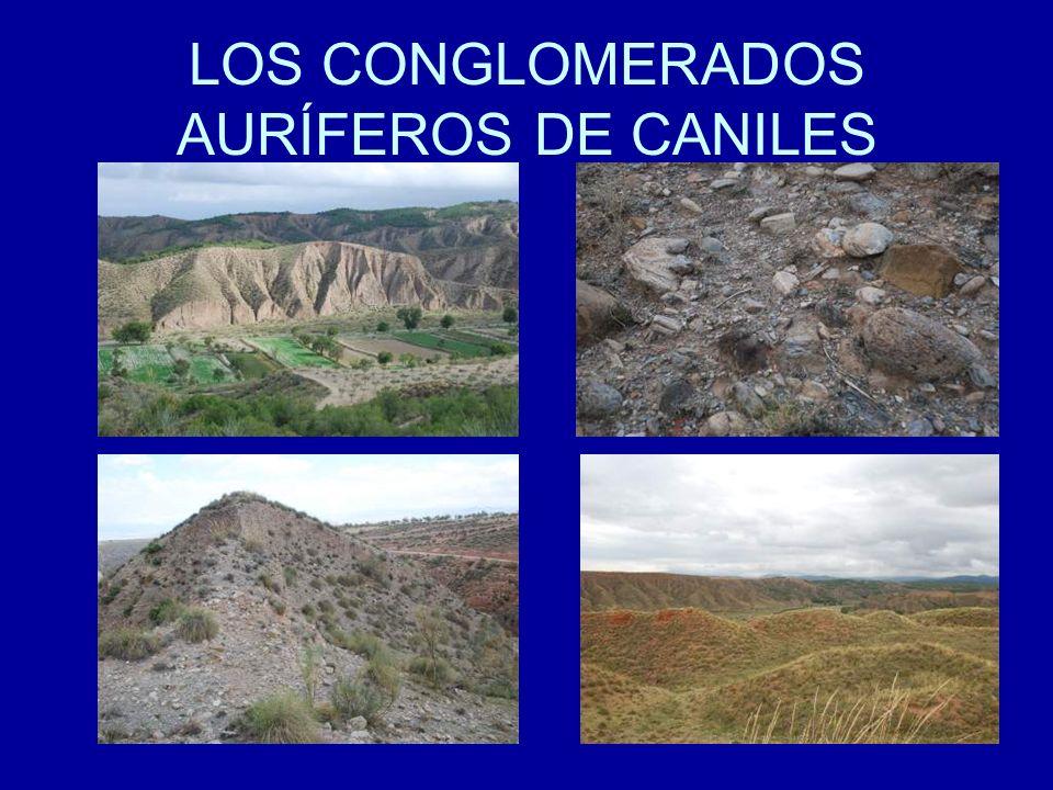 LOS CONGLOMERADOS AURÍFEROS DE CANILES