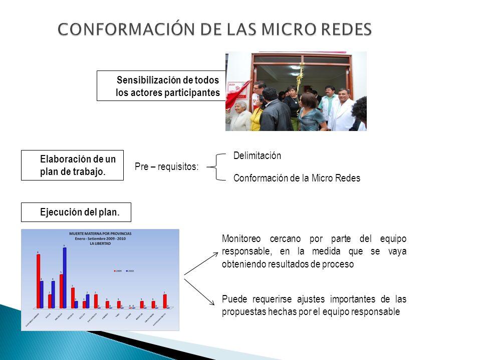 Sensibilización de todos los actores participantes Elaboración de un plan de trabajo. Pre – requisitos: Delimitación Conformación de la Micro Redes Ej