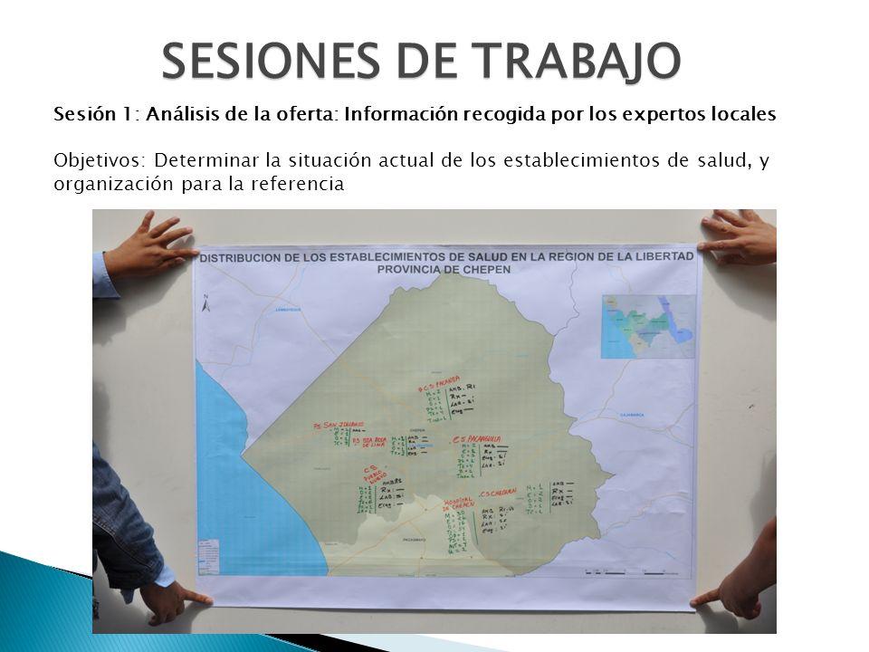 SESIONES DE TRABAJO Sesión 1: Análisis de la oferta: Información recogida por los expertos locales Objetivos: Determinar la situación actual de los es