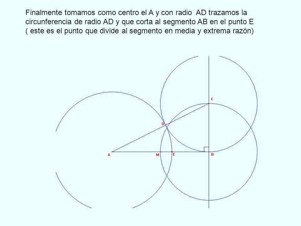 El segmento AE se denomina segmento Áureo