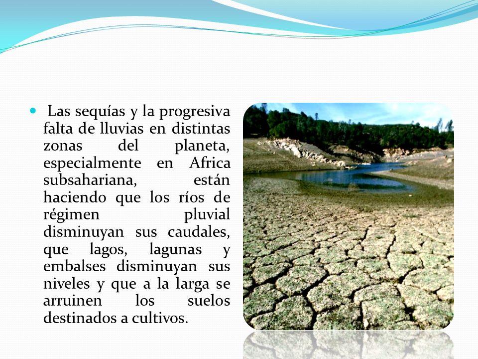 Las sequías y la progresiva falta de lluvias en distintas zonas del planeta, especialmente en Africa subsahariana, están haciendo que los ríos de régi