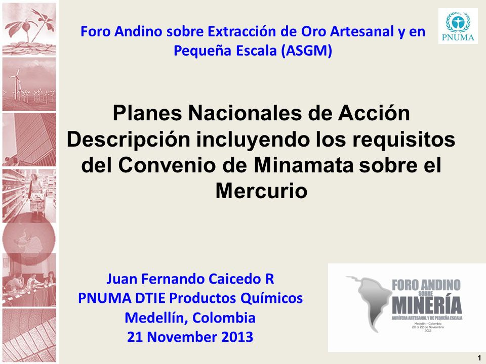 1 Foro Andino sobre Extracción de Oro Artesanal y en Pequeña Escala (ASGM) Juan Fernando Caicedo R PNUMA DTIE Productos Químicos Medellín, Colombia 21